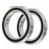 LR 202 LR202 NPPU bearings track roller bearings LR202NPPU sizes 15x40x11 mm