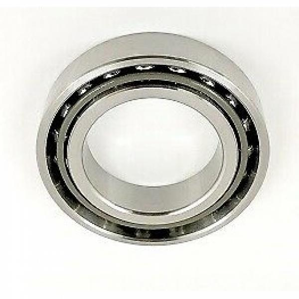 Extra Small Ball Bearings and Miniature Ball Bearings (Metric Design) #1 image